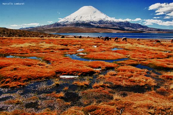 Trekking, tutti i benefici di esplorare la natura