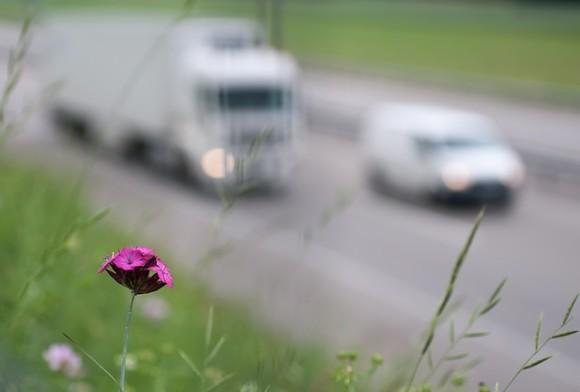 Inquinamento, green e sicurezza, le ultime notizie del 2014 [QUICK NEWS] (2)