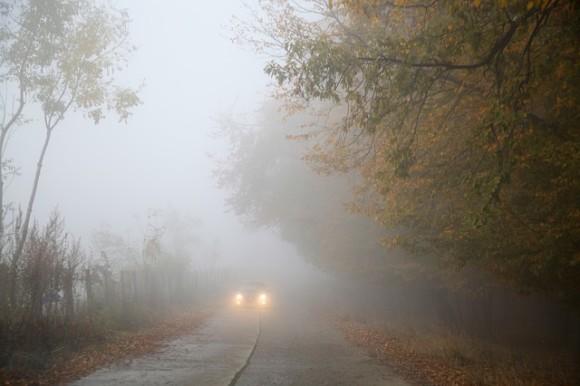 Inquinamento, green e sicurezza, le ultime notizie del 2014 [QUICK NEWS] (3)