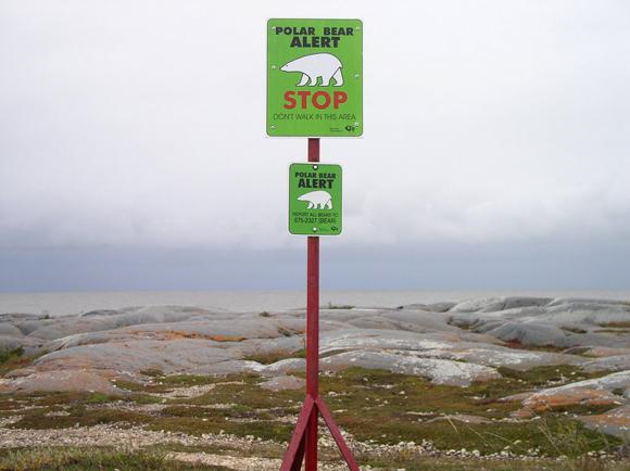 Segnale di allerta presenza orsi polari - http://www.panoramio.com/photo/596050