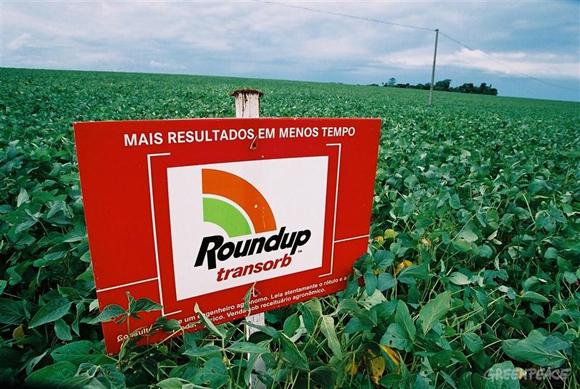 OGM o non OGM? Effetti sulla salute umana e molto altro