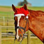 Gli auguri di Natale social