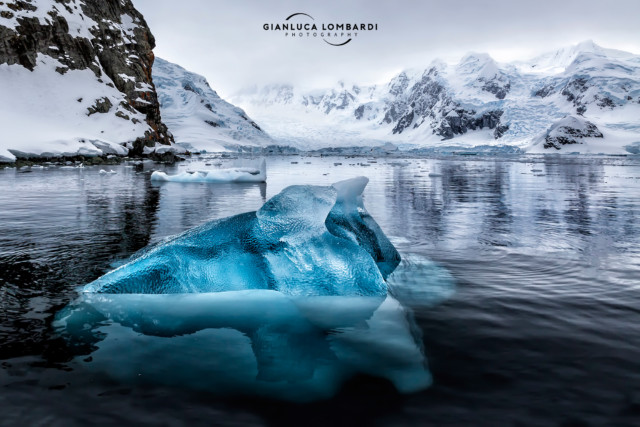 [23 Novembre 2015] Iceberg di ghiaccio antichissimo a Paradise Harbor (Penisola Antartica).