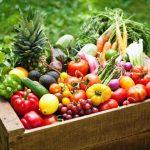 Agricoltura biologica: quando l'e-commerce diventa una necessità