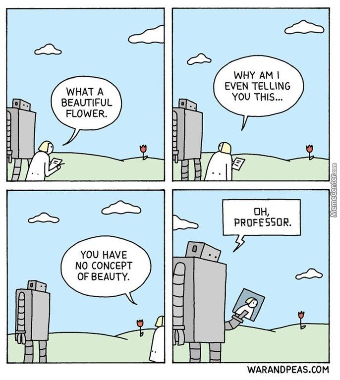 meme sui robot