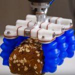 Soft Robotics raccoglie 23 milioni di dollari dagli investitori