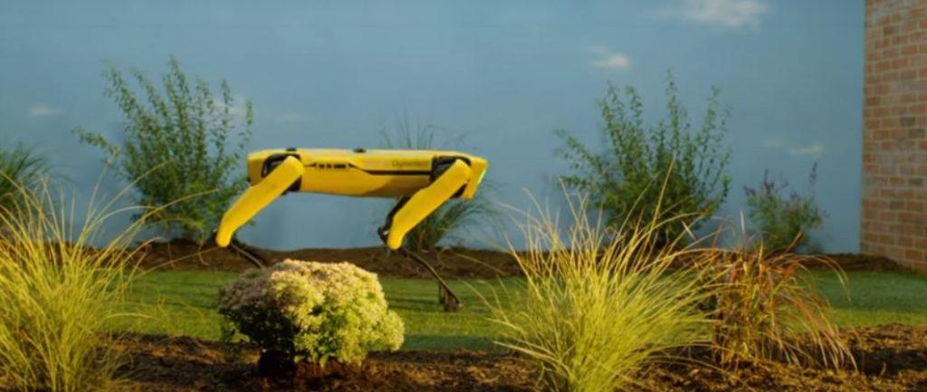 cane robot spot