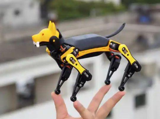 Bittle cane robotico